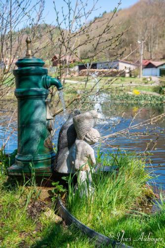 Détails de décoration extérieure au bord de l'étang