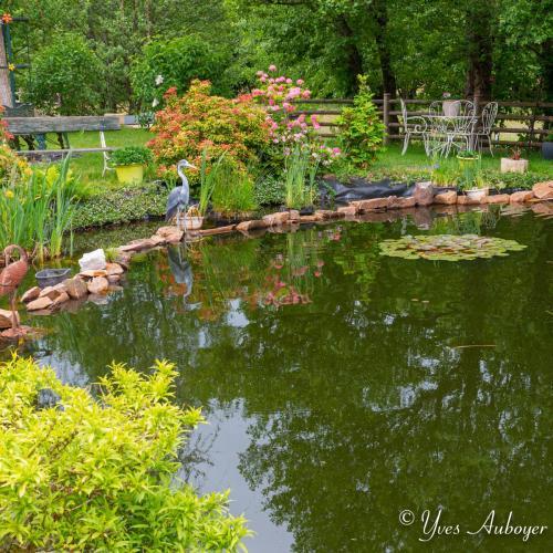 L'étang entièrement clôturé